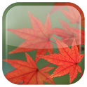 Maple Leaf Live Wallpaper icon