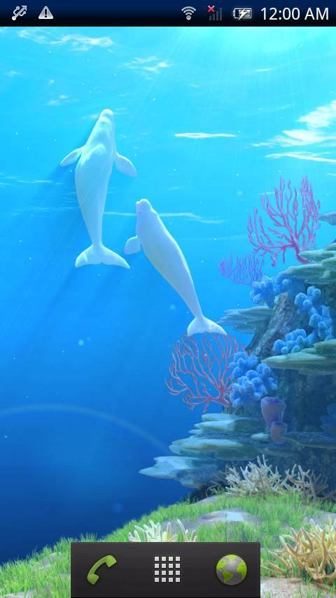 Beluga Parent Child Trial - screenshot