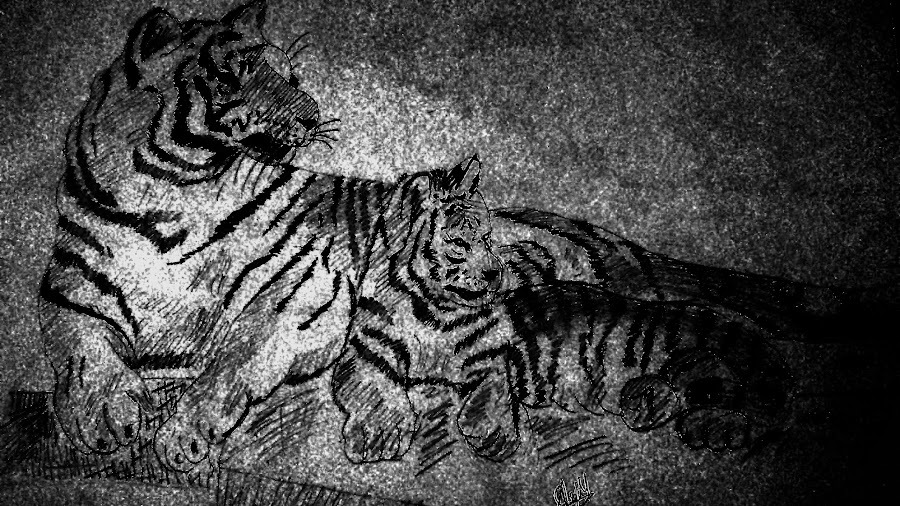 Save tigers!! by Arjun Mohan - Drawing All Drawing (  )