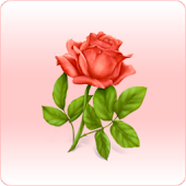 Rose Battery widget
