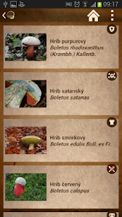 Mushroom picker Free - screenshot thumbnail