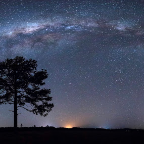 Isolation by Cameron Watts - Landscapes Starscapes ( canon, beauty, landscape, universe, milky way, colour, tree, nature, stars, night, natural, light, galaxy,  )
