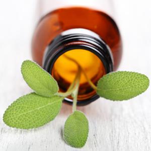 Aroma Guide 健康 App LOGO-硬是要APP