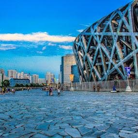 Beijing National Stadium by Eddy Tan - Landscapes Travel ( outdoor, stadium, national stadium, landscape, beijing, china )