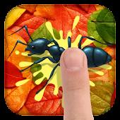 kill ant funny 2015