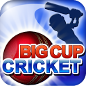 Big Cup Cricket Free icon