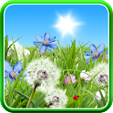 Summer Flowers Wallpaper icon