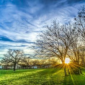 by Mobydick Mobydick - Landscapes Sunsets & Sunrises (  )