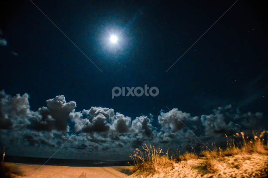 The beach under the moon. by Diane Davis - Landscapes Beaches ( sand dunes, seascapes, beach, moonlight, nightscape )