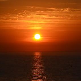 by David Stemple - Landscapes Sunsets & Sunrises ( sc, sunrise, ocean, beach, myrtle,  )