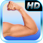 Best Arm Fitness: Bicep Tricep icon