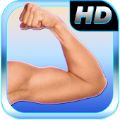 Best Arms Fitness (brazo)