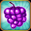 Fruit Blitz Free icon