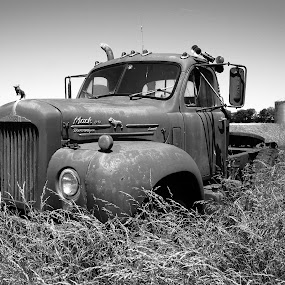 Abandoned Farm Truck by Paul Hopkins - Transportation Other (  )