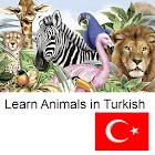 了解动物在土耳其 icon