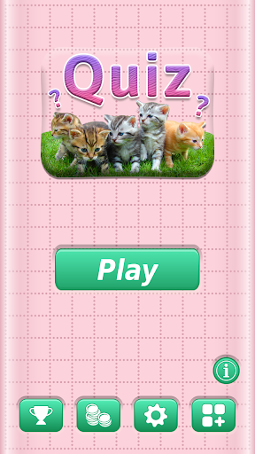 Cats Quiz - All about Cats