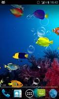 Screenshot of Fish Aquarium Live Wallpaper