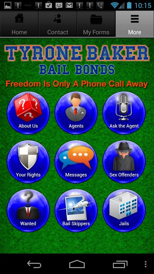 Gainesville Bail - screenshot
