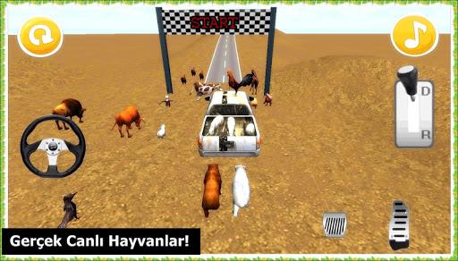 Canlı Hayvan Taşıma Oyunu 3D