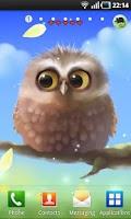 Screenshot of Little Owl