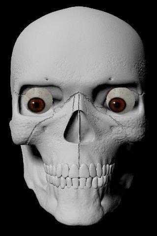 StareDCat Skele