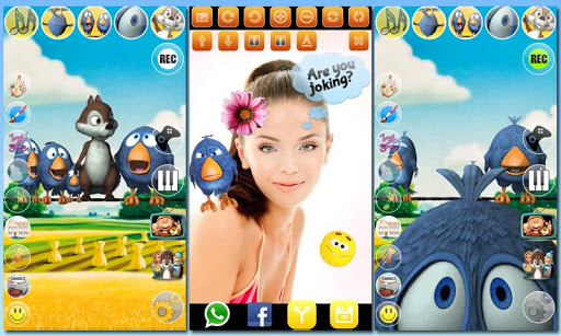 免費下載娛樂APP|說話的鳥兒在電線上AdFree app開箱文|APP開箱王