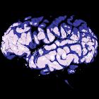 Mind Breaker icon