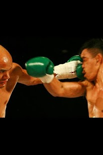 Boxing illustrated - screenshot thumbnail