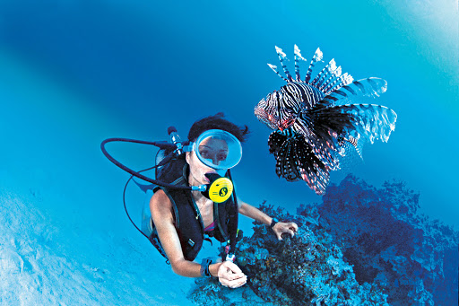 scuba_exotic_fish-1 - Encounter exotic marine life like a lionfish while scuba diving on a Paul Gauguin cruise.