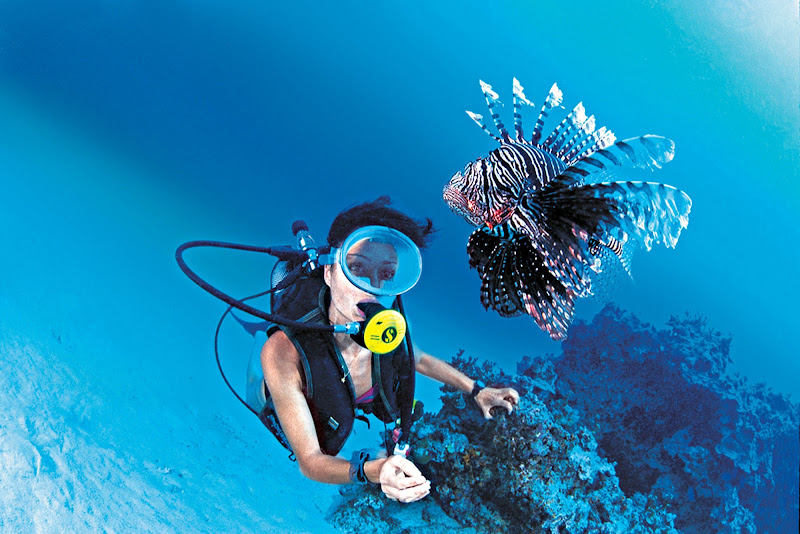 Encounter exotic marine life like a lionfish while scuba diving on a Paul Gauguin cruise.