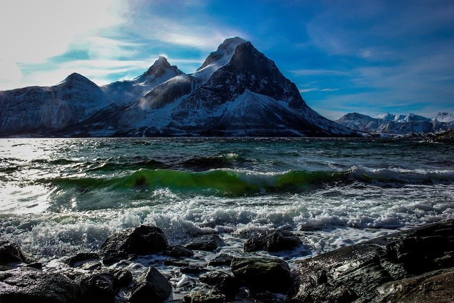 Blokktind by Elisabeth Sjåvik Monsen - Landscapes Beaches ( shore, northern, sea, arctic, coast, norway,  )