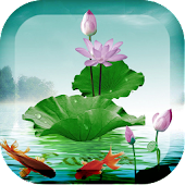 Lotus Flower Live Wallpaper