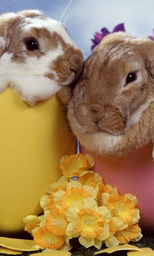 Happy Easter LWP