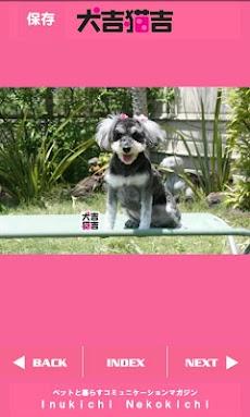 犬吉猫吉かわいいペットコレクション1のおすすめ画像3