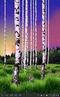Screenshot of Birch Wood Free