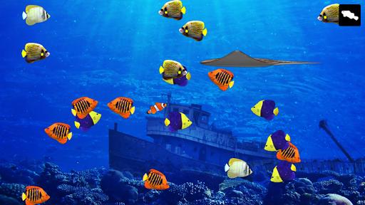 Tap Aquarium