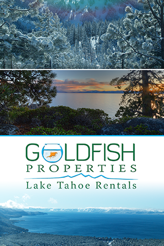 Lake Tahoe Rentals Goldfish