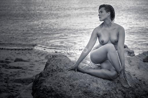 Artistic ebony nude