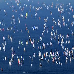 BARCOLANA (TRIESTE GULF, ITALY) by Riccardo Schiavo - Transportation Boats ( water, device, transportation,  )