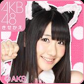 AKB48きせかえ(公式)柏木由紀-PC-