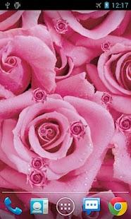 玫瑰花動態桌布
