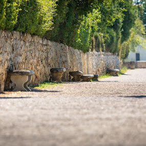 Lonely benches by Jan Stupka - City,  Street & Park  Historic Districts ( tuscany, benches, pathway, italy, public, bench, furniture, object )