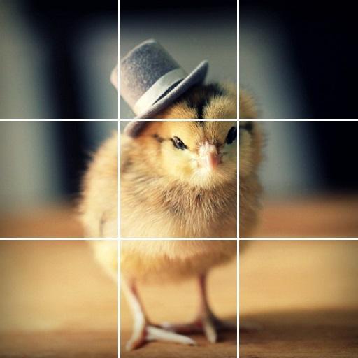 溫柔的動物之謎 解謎 LOGO-阿達玩APP