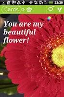 Screenshot of Flowers Postcards