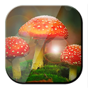 Mushroom Live Wallpaper icon