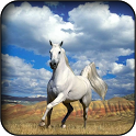 White Horse Wallpapers icon