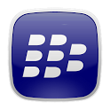SL Theme BlueBerry icon