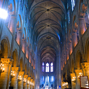 Notre Dame  by Cristiana Chivarria - Buildings & Architecture Places of Worship ( paris, notre dame, cathedral, france, building, interior, worship )