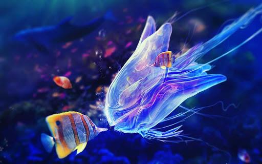 5D海洋水族馆高清壁纸