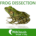 Frog Dissection for tablet icon